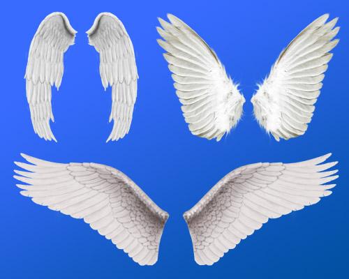 Разнообразные крылья ангела