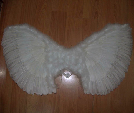 Крылья нежного ангела