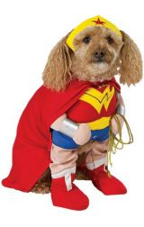 Костюм супермена Dog
