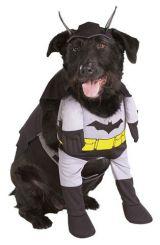 Костюм Бэтмена Dog