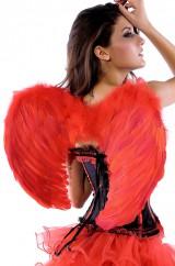 Красные крылья ангела