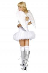 Крылья белого ангела