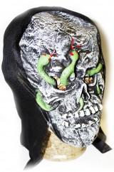 Голова скелета со змеями