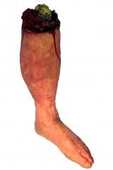 Половинки ног